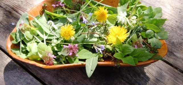 Spring Herbs, gathered in a bowl.